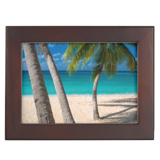 Palm trees and turquoise water along Seven-Mile Memory Box
