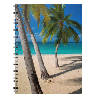 Palm trees and turquoise water along Seven-Mile Spiral Notebook