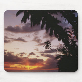 Palm Trees at sea Mouse Pad