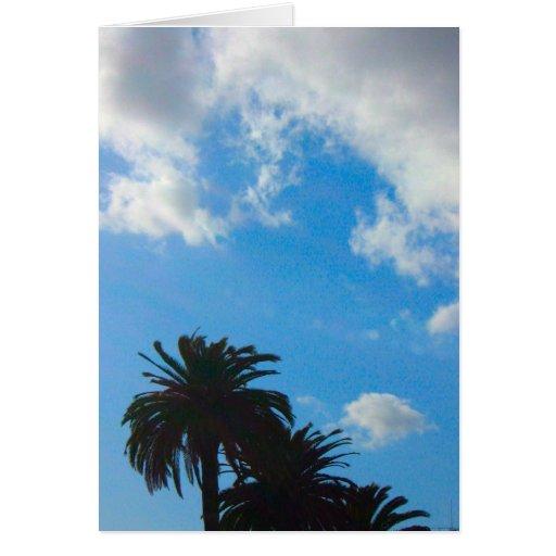 Palm Trees  Blue Sky Greeting Card