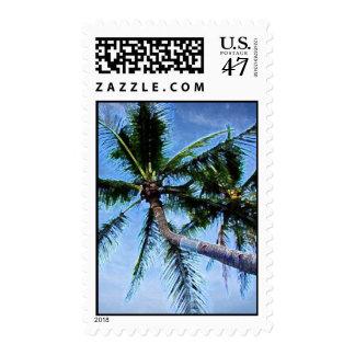 Palm Trees & Blue Sky Postage