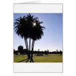 Palm trees card