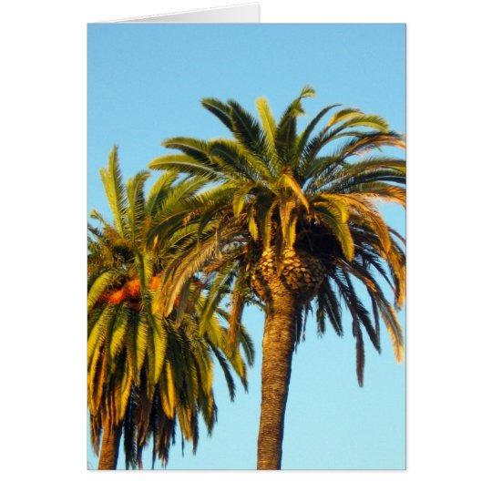 Palm Trees Card