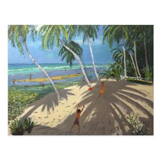 Palm trees Clovelly beach Barbados 2013 Postcard