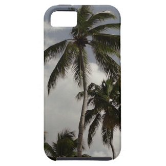 Palm Trees Dominican iPhone 5 Cases