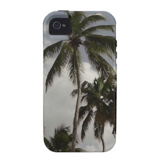Palm Trees Dominican iPhone 4 Cases