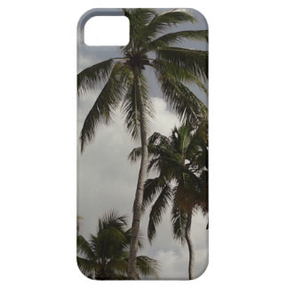 Palm Trees Dominican Case For The iPhone 5