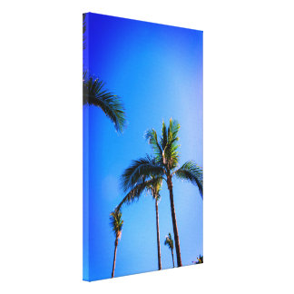 Palm Trees From The Tropics Canvas Print