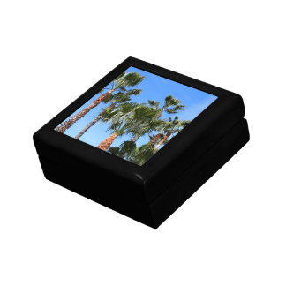 Palm Trees Gift Boxes