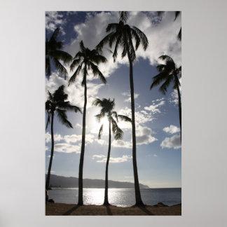 Palm Trees – Hawai Poster