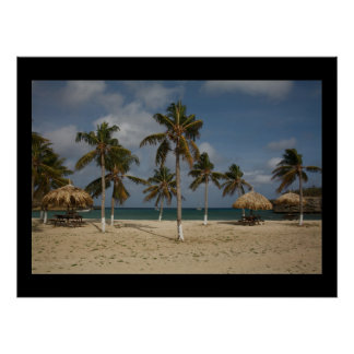 Palm trees in breeze poster