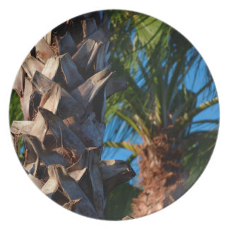 palm trees in florida plate
