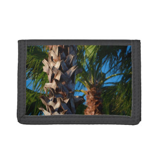 palm trees in florida tri-fold wallet