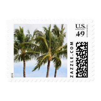 Palm Trees in Kauai Postage Stamp