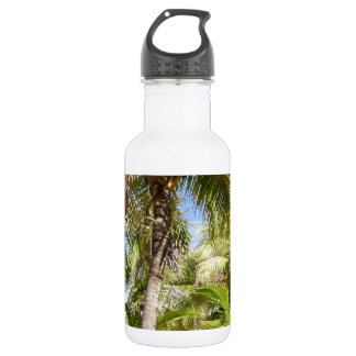 Palm Trees in Mexico Stainless Steel Water Bottle