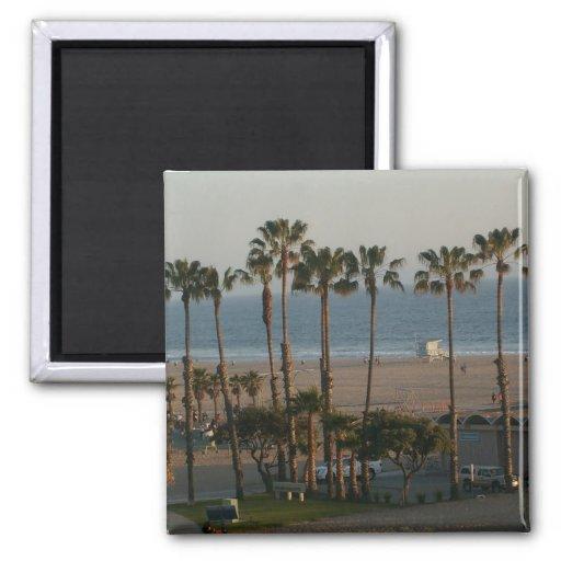 Palm Trees in Santa Monica Magnet