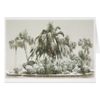 Palm Trees in the Snow Card