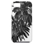 Palm trees iPhone 5 covers