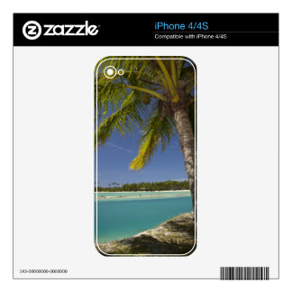 Palm trees & lagoon, Musket Cove Island Resort Decals For The iPhone 4S