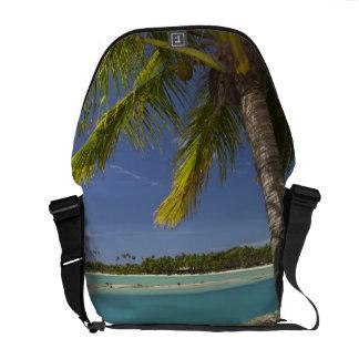 Palm trees & lagoon, Musket Cove Island Resort Messenger Bags