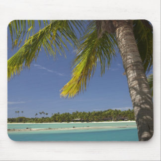Palm trees & lagoon, Musket Cove Island Resort Mouse Pad