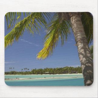 Palm trees & lagoon, Musket Cove Island Resort Mousepads
