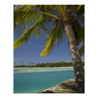 Palm trees & lagoon, Musket Cove Island Resort Poster