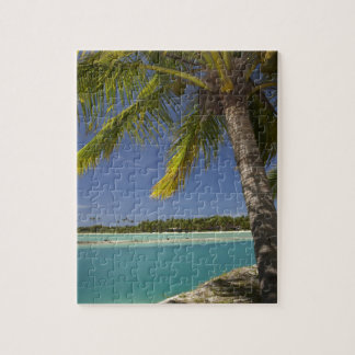Palm trees & lagoon, Musket Cove Island Resort Puzzle