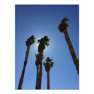 las vegas palm trees art wall décor zazzle