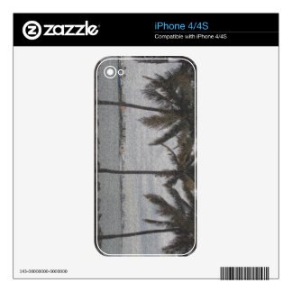 Palm Trees Miami, Florida iPhone 4S Decals