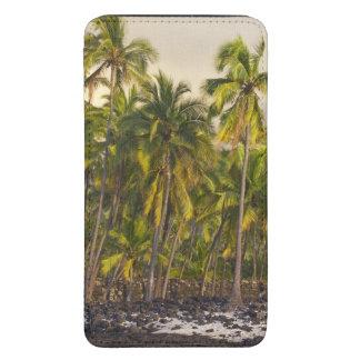 Palm trees, National Historic Park Pu'uhonua o 2