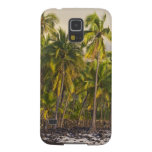Palm trees, National Historic Park Pu'uhonua o 2 Cases For Galaxy S5