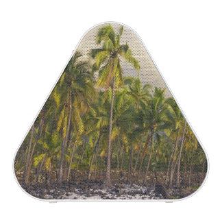 Palm trees, National Historic Park Pu'uhonua o 2 Bluetooth Speaker