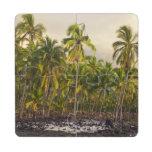 Palm trees, National Historic Park Pu'uhonua o 2 Puzzle Coaster