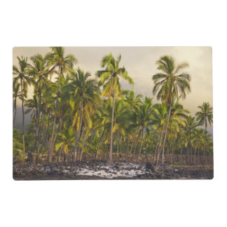 Palm trees, National Historic Park Pu'uhonua o 2 Placemat