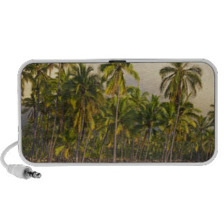 Palm trees, National Historic Park Pu'uhonua o 2 Notebook Speakers