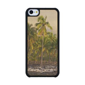Palm trees, National Historic Park Pu'uhonua o 2 Carved® Maple iPhone 5C Case