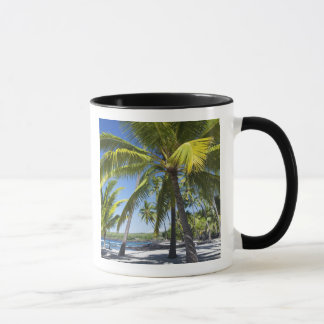 Palm trees, National Historic Park Pu'uhonua o Mug