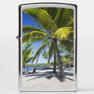 Palm trees, National Historic Park Pu'uhonua o Zippo Lighter