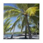 Palm trees, National Historic Park Pu'uhonua Small Square Tile
