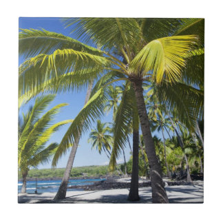 Palm trees, National Historic Park Pu'uhonua Tile