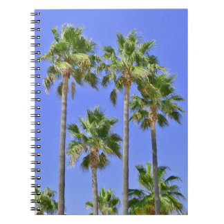 Palm Trees - Notebook
