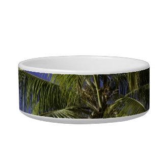 Palm trees on a Caribbean tropical island Bowl