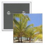 Palm Trees on a Honduras White Sand Beach Button