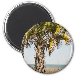 Palm Trees on Myrtle Beach East Coast Boardwalk Magnet