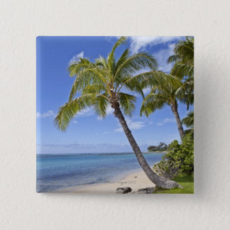 Palm trees on the beach in Hawaii. Button