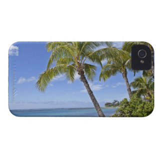 Palm trees on the beach in Hawaii. iPhone 4 Case-Mate Case