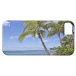 Palm trees on the beach in Hawaii. iPhone 5 Covers