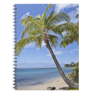 Palm trees on the beach in Hawaii. Spiral Notebook