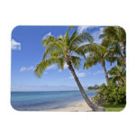 Palm trees on the beach in Hawaii. Vinyl Magnets